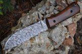Damascus Bushcraft & Hunting Knife - Unique Burl Wood Handle