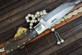 Handcrafted Beautiful Camping Knife With Burl Wood And Brass Pins Handle