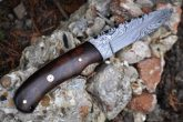 Handmade Damascus Hunting Knife With Burl Walnut Wood