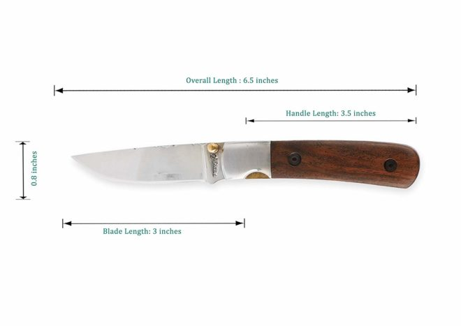 Perkin FN1920 Pocket Knife With safety liner lock for Camping Hunting Survival and Outdoor